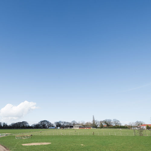 landscape--pic